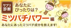 サプリ診断「ミツバチパワー編」